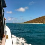 Buck Island - St Croix Things to Do