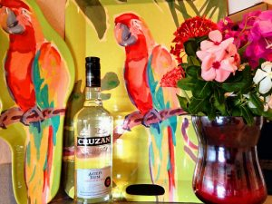 Parrot's Perch - St Croix Vacation Rentals at Colony Cove