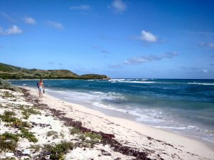 Jack and Isaac Bay - St Croix, Virgin Islands